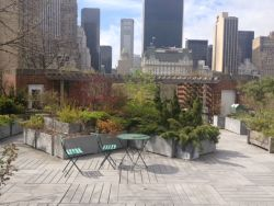 The 4th floor southern rooftop container garden is one of three gardens at the Arsenal managed by Kaitilin Griffin.
