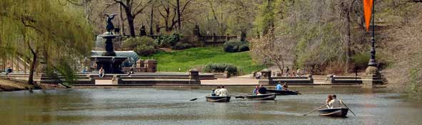Recreational boaters operate paddleboats