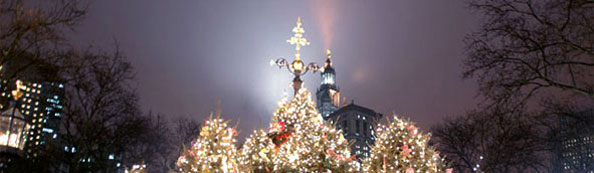 Christmas trees with light up the night sky in City Hall Park