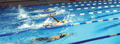 Swimmers doing laps in a pool