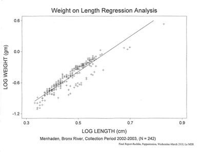 Mendahen weight on length regression