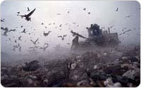 Steam rises as a compactor rolls over freshly dumped garbage at Fresh Kills Landfill, 2001, photo by Michael Falco