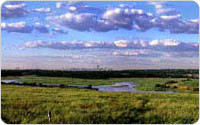 Panoramic View of Fresh Kills and Manhattan Skyline, 2000, photo by Michael Falco