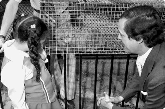A child gazes at a caged groundhog at the Central Park Zoo while Parks commissioner Gordon J. Davis observes, February 5, 1978. Courtesy of Parks Photo Archive; neg. 41907.