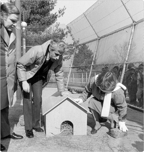 Parks Commissioner Henry Stern and Queens Zoo Director Faye Witherell await the emergence of a weather-predicting rodent, February 1984. Courtesy of Parks Photo Archive.