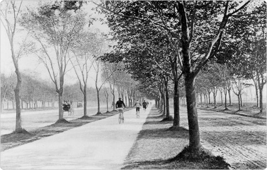 Image of Ocean Parkway bicycle path, circa 1894. Neg. AR1099