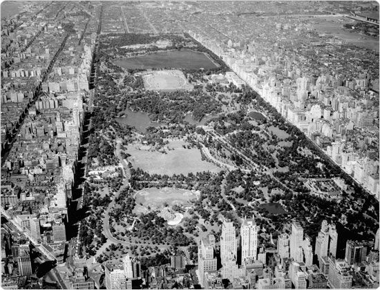 Image of 24, 1938 aerial view of Central Park. Neg. 14257