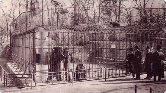An image of bear dens from ?The New York Zoological Park Book of Views,? published by the New York Zoological Society in 1906.