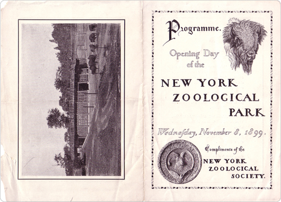 The November 8, 1899 opening day program for the Bronx Zoo.