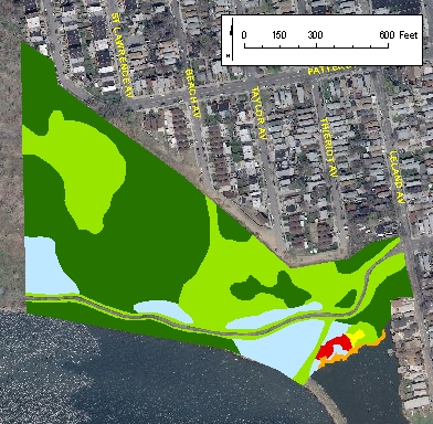 Soundview Park ACOE Vegetation Mapping