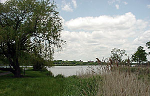 image of meadow lake