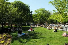 Parkgoers enjoy expanded lawns in Washington Square Park. Photo by Malcolm Pinckney.