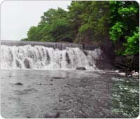 Bronx River Waterfall