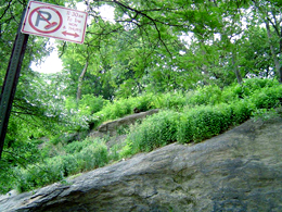 Large boulder rocks with outcropping at St. Nicholas park