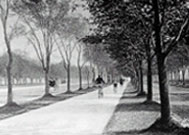 New bicycle path in Ocean Parkway Brooklyn (1894)