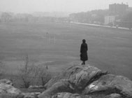 A lone figure stands on an outcrop, surveying a large meadow in a park