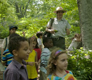 Urban Park Ranger leading kids on a nature walk