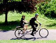 Two people riding bicycles on a park path