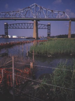 Photograph of Arthur Kill/ Kill Van Kull deepening salt marsh and surrounding area