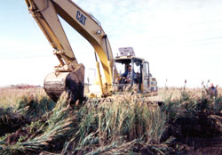 Photograph of a construction vehicle removing land in Saw Mill Creek Salt Marsh
