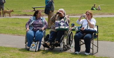 People in wheelchairs watching an event