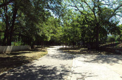 Brower Park