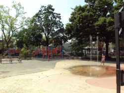 Martin Luther King Jr. Playground