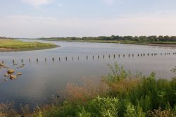 Marine Park Salt Marsh