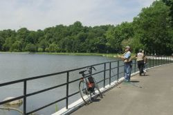 A Man Fishes at Kissena Lake