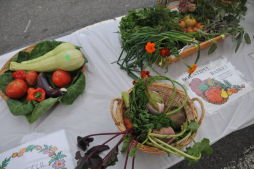 El Flamboyan Community Garden Harvest Fair