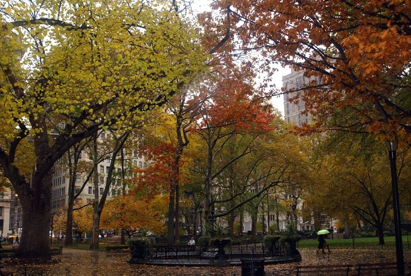Madison Square Park Wi Fi Hot Spots Nyc Parks