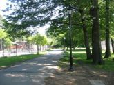 Allerton Fields in Bronx Park