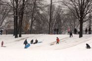 Sledding in Juniper Valley Park