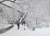 Riverside Park Snow Day