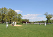Baisley Pond Park Cricket Pitch