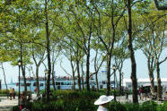 Battery Park Bosque