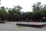 Brower Park basketball court