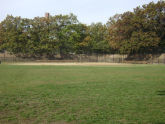 Cypress Hills Playground Baseball Field