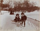 Recent Vision of Jollity, Children and Dog Sledding, Central Park, Manhattan,