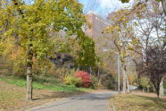 Fall in Morningside Park