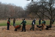 Maintaining Alley Pond Park