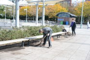 Volunteers at Hudson River Park