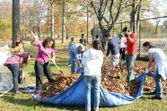 Crotona Park Volunteer Cleanup