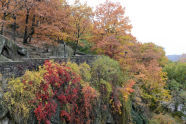 Fort Tryon Park (10/30/13)