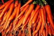 Greenmarket carrots