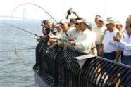 Mayor Bloomberg and his catch