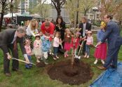 Planting a cherry tree adjacent to the George Washington monument