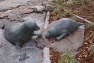 East River Park Seals
