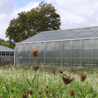 Picture of a GNPC Greenhouse
