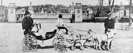 Goat  Carriage Concession, Central Park, Manhattan circa 1869,  New York City Parks Photo Archive